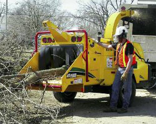 Man watching a tree go through a wood chipper