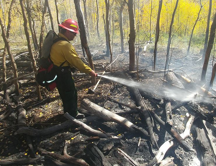 firefighter spraying burnt trees